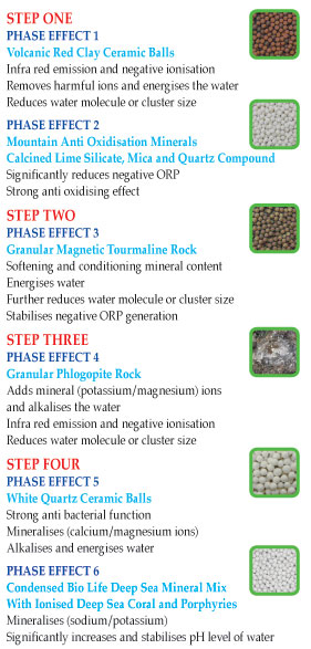 Pi Bio Alkaliser FIlter Steps